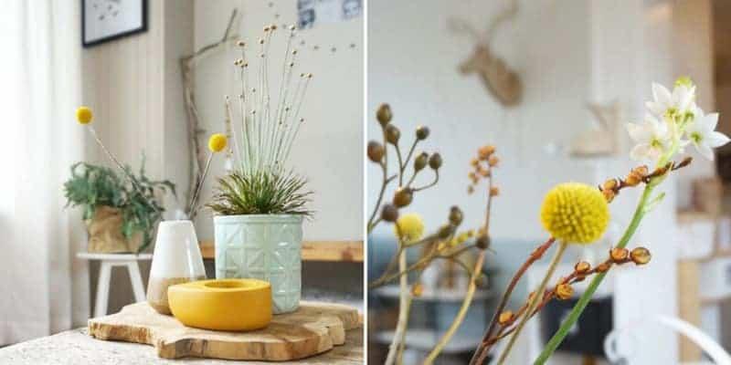 binnenkijken gele bloemen