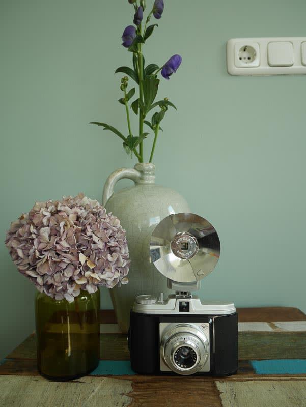 camera vintage woonaccessoires