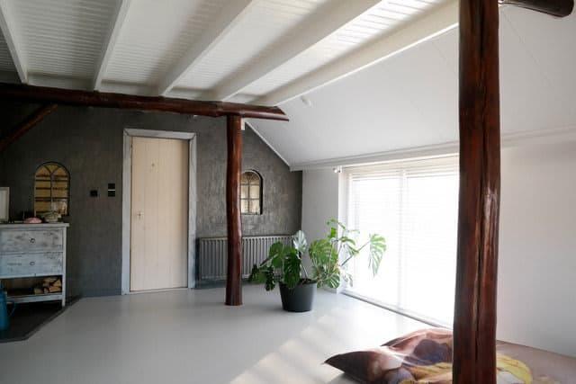kleur interieur grijze wand
