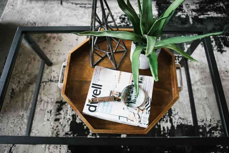 plant tafel urban jungle