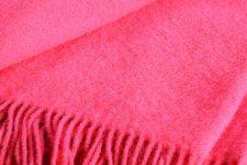 rode plaid wol