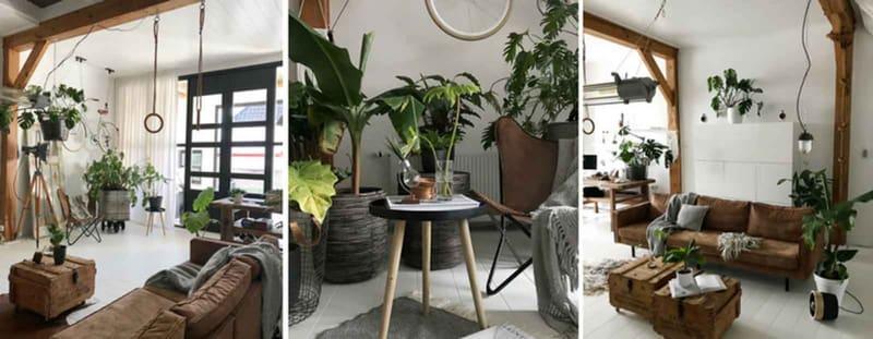 urban jungle planten interieur