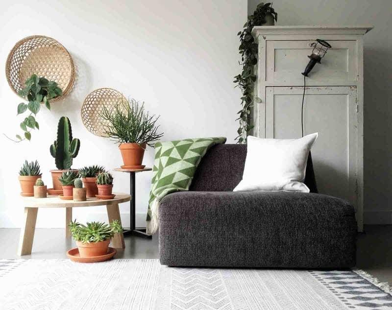 woonkamer plaid planten