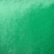 sierkussen groen fluor raaf