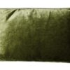 Kussen groen velvet raaf luxe langwerpig