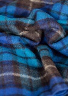 Picknickkleed wol blauw geruit