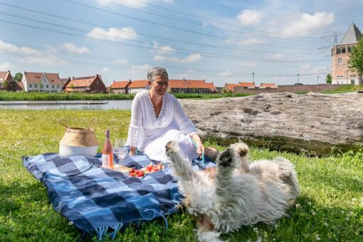 picknick kleed wol blauw ruiten