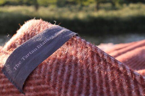 picknickkleed wol detail