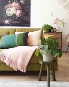 plaid roze groen interieur